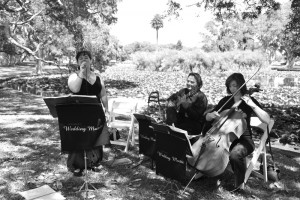 Wedding Trio with Vocalist